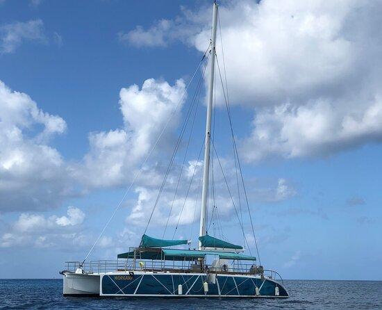 Catamaran à voile de 15 mètres à louer à la journée 51 feet sail catamaran for day rental  Catamarán de vela de 15 metros de renta por día
