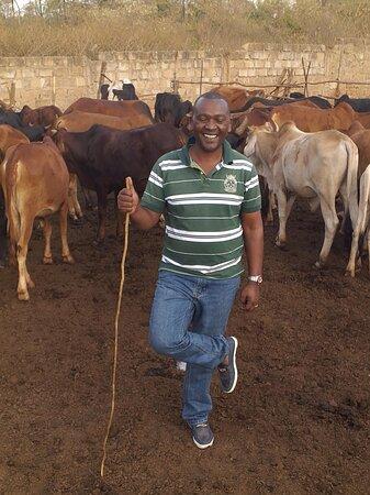 masai wealth