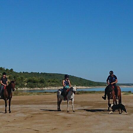 Horse Center Libertas