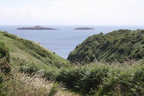the 'temporary' path to Porth Meudwy.