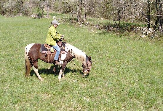 Brugnac, France: Centre équestre d'équitation Western de loisirs
