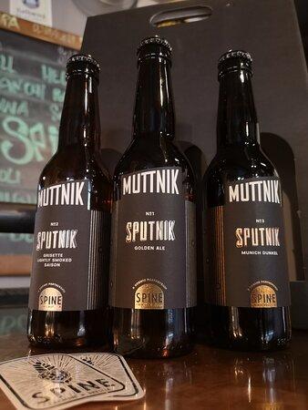 Our Sputnik Series