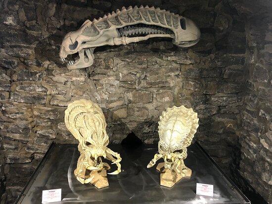 Aliens vs Predators Experience Museum
