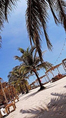 Foto de Isla Tierra Bomba