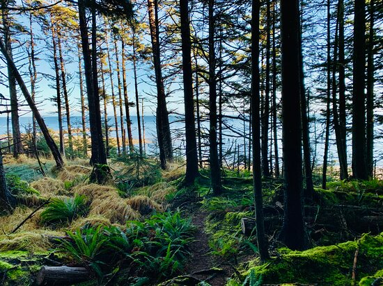 Walking the St. Mary's Spring escarpment trail