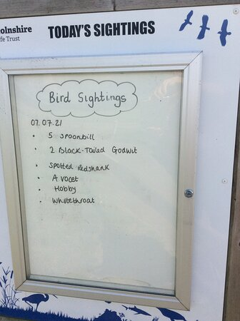 Bird sightings on the day of our visit.