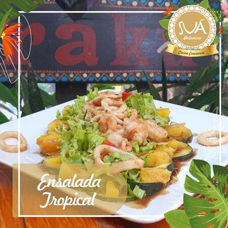 Ensalada Tropical: camarones, anillos de calamar, variedad de lechugas calabacín, piña, pimentón asado y vinagreta de la casa.