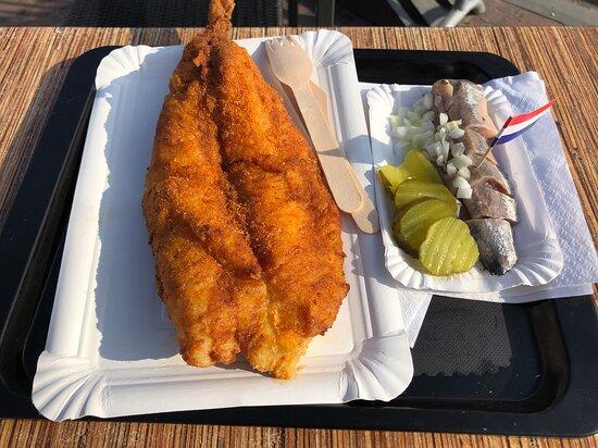 wat een fijne visjes