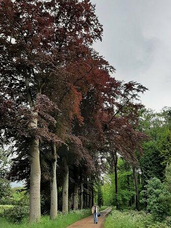 Landgoed Het Enzerinck | Vorden, Gelderland, Nederland