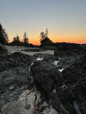 North coast trail scenery
