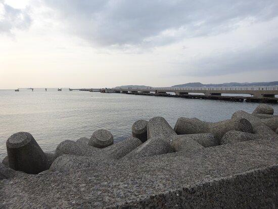 すぐ隣には館山夕日桟橋と言う素敵な夕日スポットがあります。