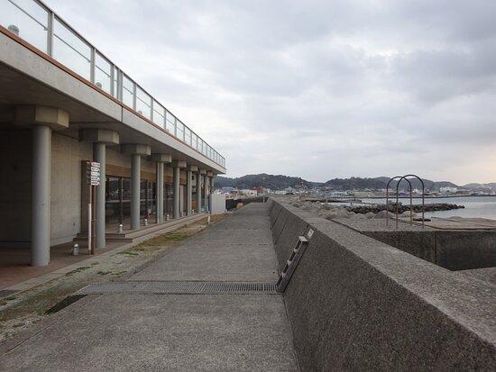 夕暮れ前の訪問で店は閉まってましたが展望デッキから目の前の館山湾が一望できるみたいでした。