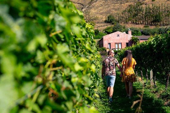 Partner winery to Crowne Plaza Queenstown