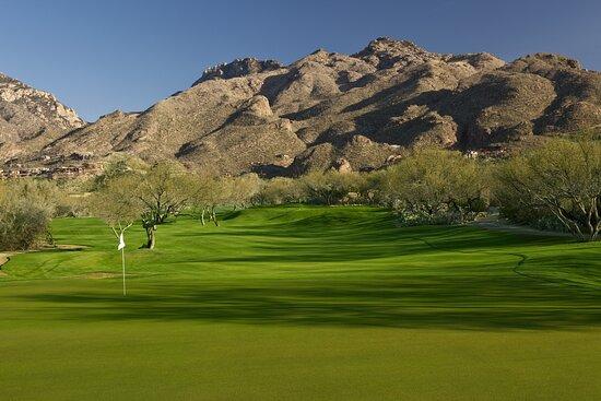 Golf Course - 8th Hole
