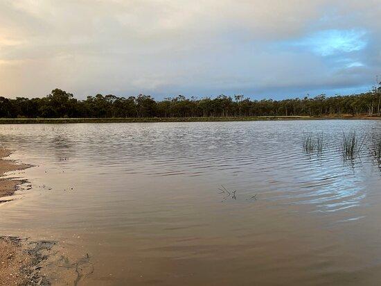 Bealiba Reservoir Reserve