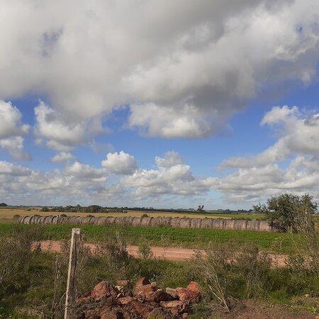 Granja Jacaranda