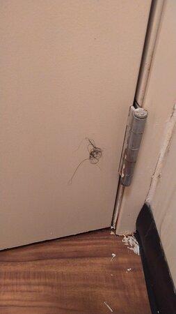 Hair stuck to back of bathroom door