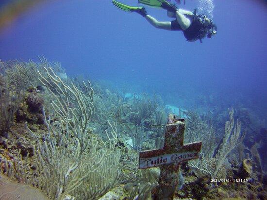 Roatan, Honduras: An underwater memorial