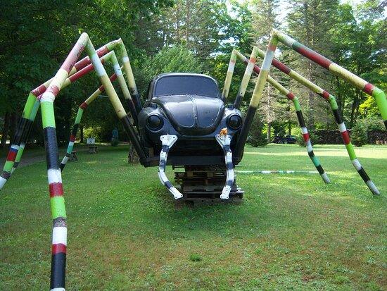 Jake rides spider at Schaefer's Auto ARt
