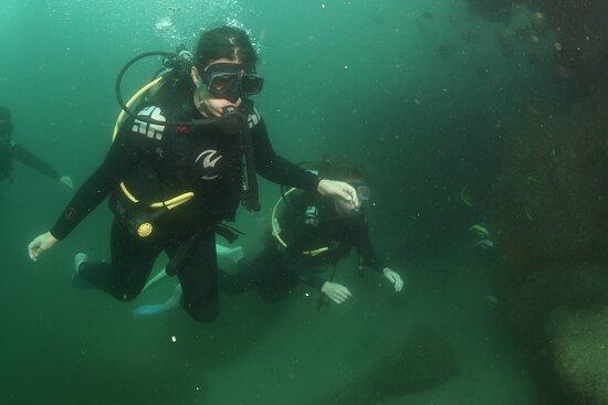 Cabo San Lucas Beginner Scuba Diving Experience: Action Shot