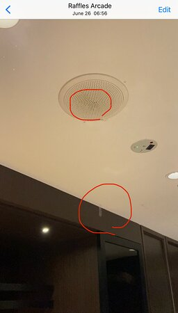 Water drips (highlighted in red) from the emergency speaker on the ceiling.