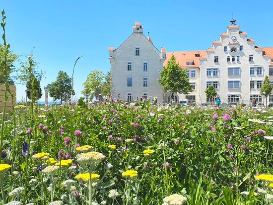 Gartenschau Lindau