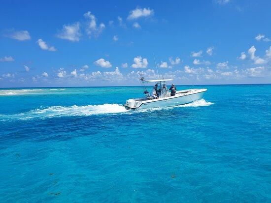 Sea Senorita Charters