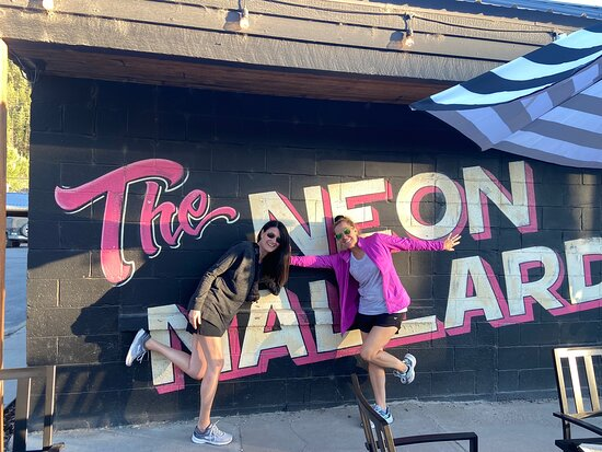 Neon Mallard