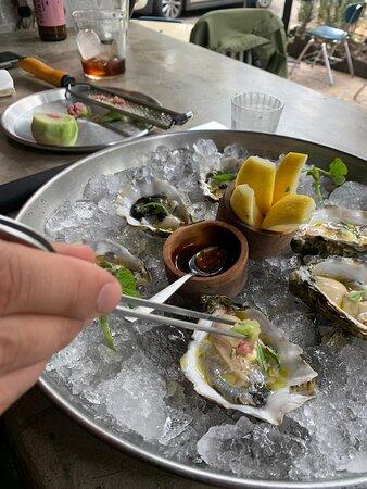 Kumai Oysters