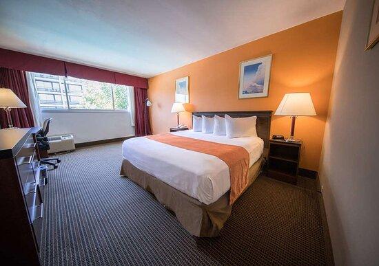 فوليرتون, كاليفورنيا: Guest room