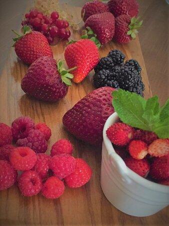 Frutti rossi direttamente dall'Abetone