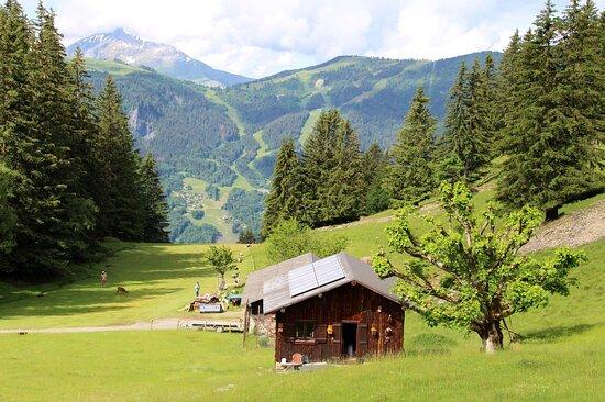 Parc de Merlet