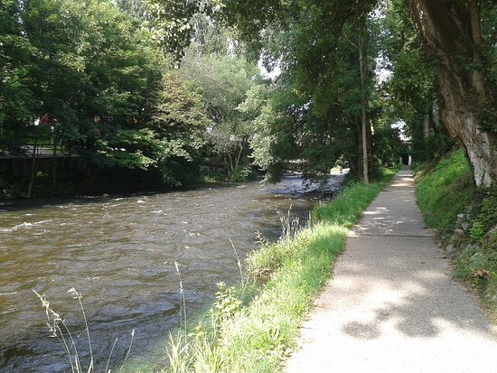Dreisam River
