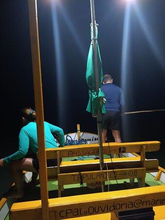Pesca Noturna de Agulhinha
