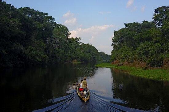 Conexion-Amazonas Puerto Nariño