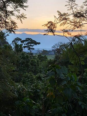 View of Rwenzori Mts at sunset