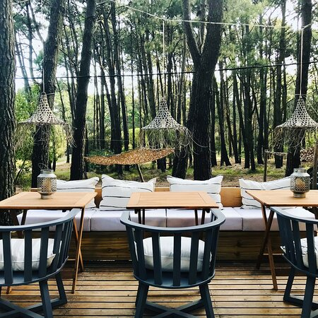 Treetop Master Suite - Foto van Terral Suites, Mar de las Pampas - Tripadvisor