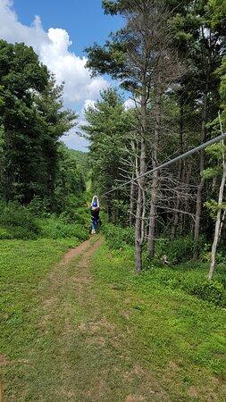 BOBs first time - Photo de Buffalo Mountain Ziplines, Floyd - Tripadvisor