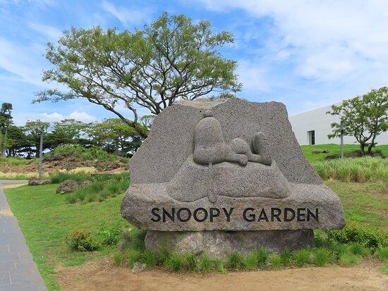 Snoopy Garden
