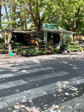 Gelateria Pico, Via Donatello 81 Roma