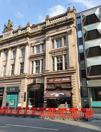 Moose Coffee in Liverpool Commercial District