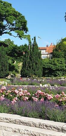 Beatiful Visby