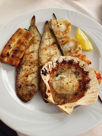 Very nice fish dishes