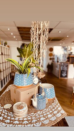 We have an array of tropical house plants for sale in our coffee shop, along with pots and other retail items.