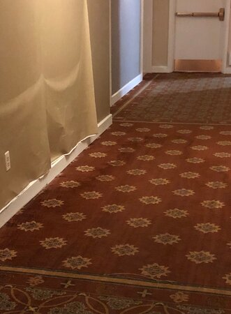 Obviously a major leak that had been a problem for some time.  Carpet was soaked, smelled of mildew and mold