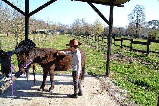Activité « découverte du ranch»