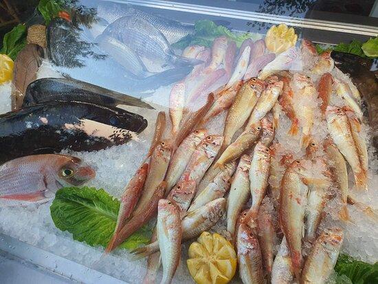 Faros fresh fish !!!