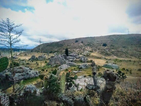 Piedras De Chivo Negro