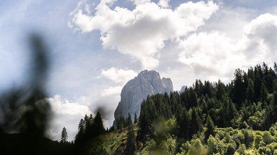 View of the Sassolungo