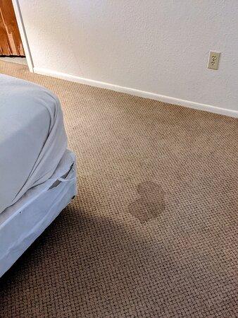 Carpet Master Bedroom
